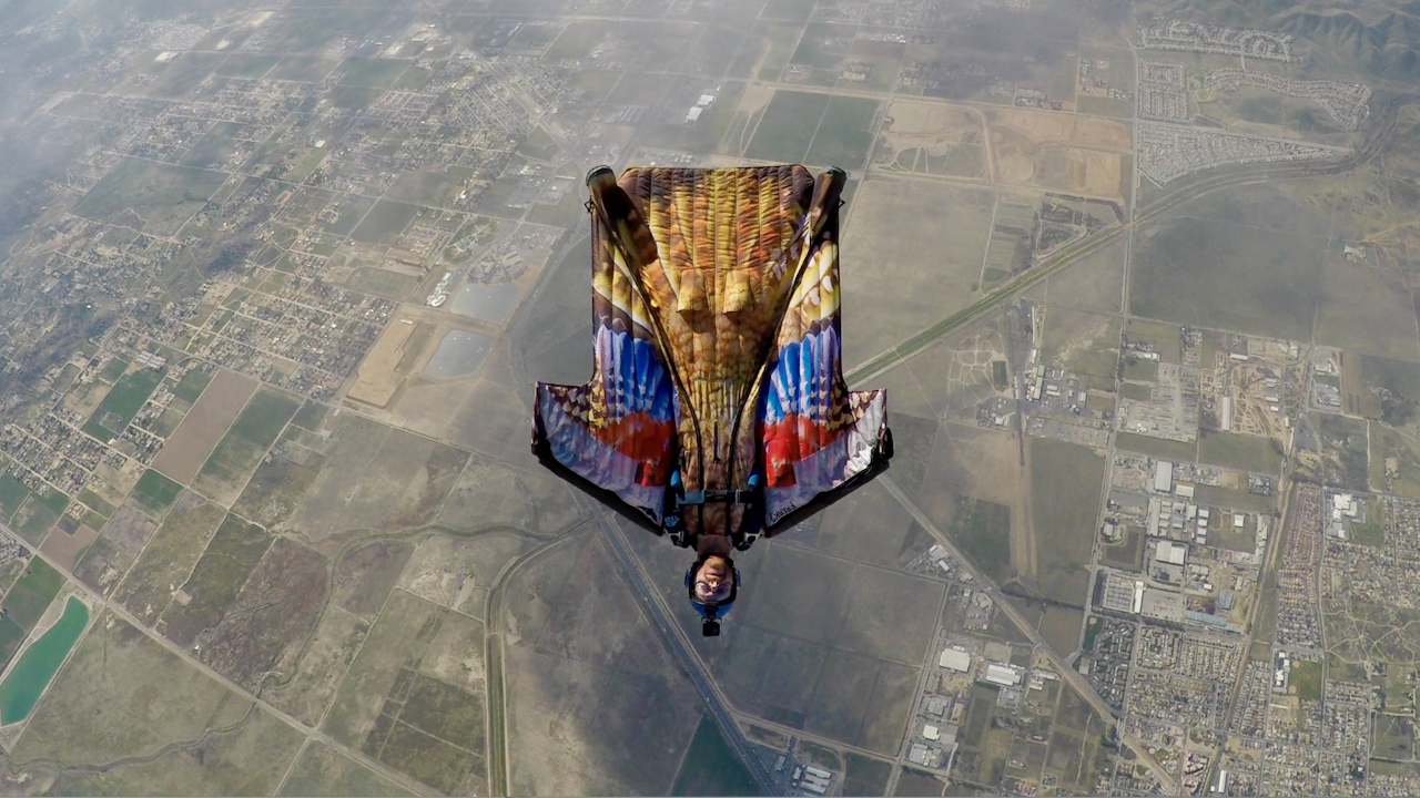 Wingsuit Bird